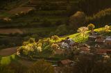 Пролет в Родопите ; comments:19