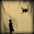 Моят малък свят.... ; comments:34