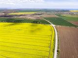 Франгенско плато ; comments:3