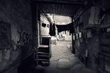 Тишина от стъпки забравени ; comments:8