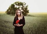 Poppy feeling ; Comments:16