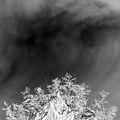 Storm ; Comments:8