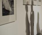 Сенки от една изложба ; comments:6