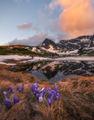 Пролетна Рила... ; comments:19