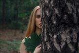 В гората ; comments:3