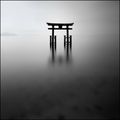 ~ Floating Torii ~ ; comments:31