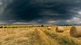 Бурята приижда ; comments:9