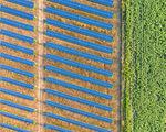 Зелена енергия ; Comments:1