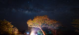 Млечен път над бивака - Katavi NP, Tanzania ; comments:3