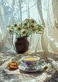 Обичам утрините с теб ; Comments:8