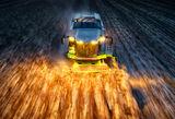 Жътва на царевица в Русенско ; comments:21
