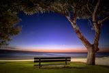 Пейка на плажа ; Comments:7