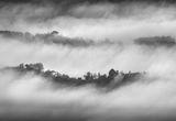 Пред прозореца ми спря мъгла..... ; comments:17