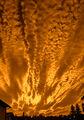 Залез в шепите на Бога ; Comments:6