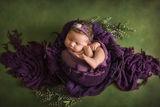 Newborn fine art ; comments:2