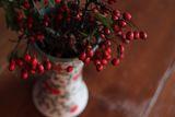 Импресия в червено......... ; comments:7
