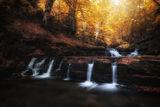 Есен по реката ; comments:5