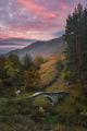Есен в Родопите ; comments:31