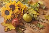 ... слънчогледено # есенно # с дъх на канела ; comments:8