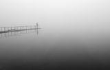 ,,Мъгливо утро'' ; comments:8