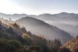 Утро в Родопите ; comments:8