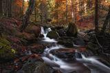 Есента... ; comments:18