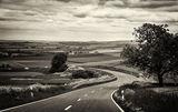 Дългият път към дома ; comments:9