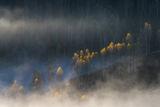 Есен в Румъния ; comments:32