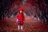 червената шапчица ; comments:20