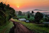 Село в Уганда ; comments:5