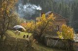 Все още е есен... ; comments:7