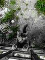 Котенце ; comments:1