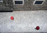Мъничко червеничко... ; comments:49