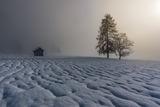 Доломити - снежни, мъгливи и красиви... ; comments:22