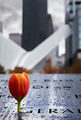 Мемориалът ; comments:2