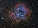 Rosette Nebula ; comments:12