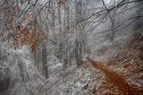 Краят на една топла есен ; comments:22