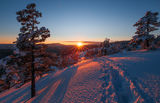Зимата и Родопите ; comments:8