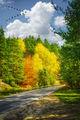 Есенна магия ; comments:35