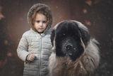 Кати и голямото куче ; comments:23