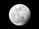 Луна 10.01.2020 ; comments:10