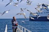 Човека с птиците ; Comments:11