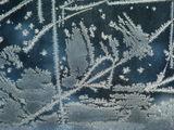 Зимата рисува... :) ; comments:14