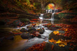 Есен в Родопите ; comments:38