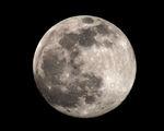 """""""Снежната луна"""" ; comments:8"""