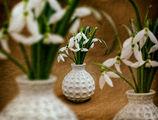 Предпролетно усещане ; comments:5