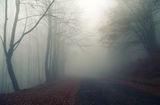 Да се загубиш.... ; comments:15