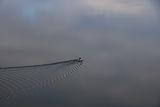 Рибари ; comments:7