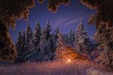 Магията на зимата ; comments:39