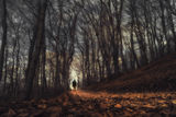 Път във вечността ; comments:10